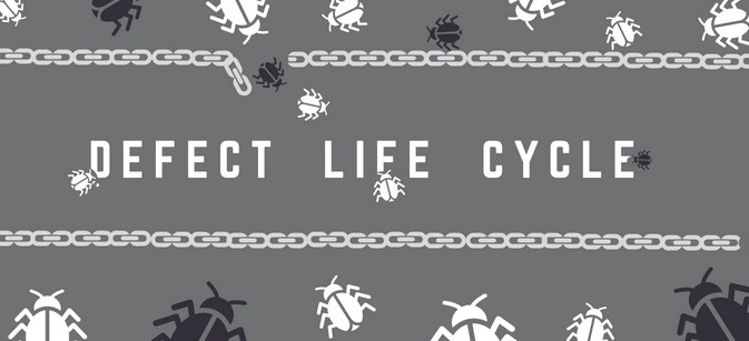 Defect Life Cycle